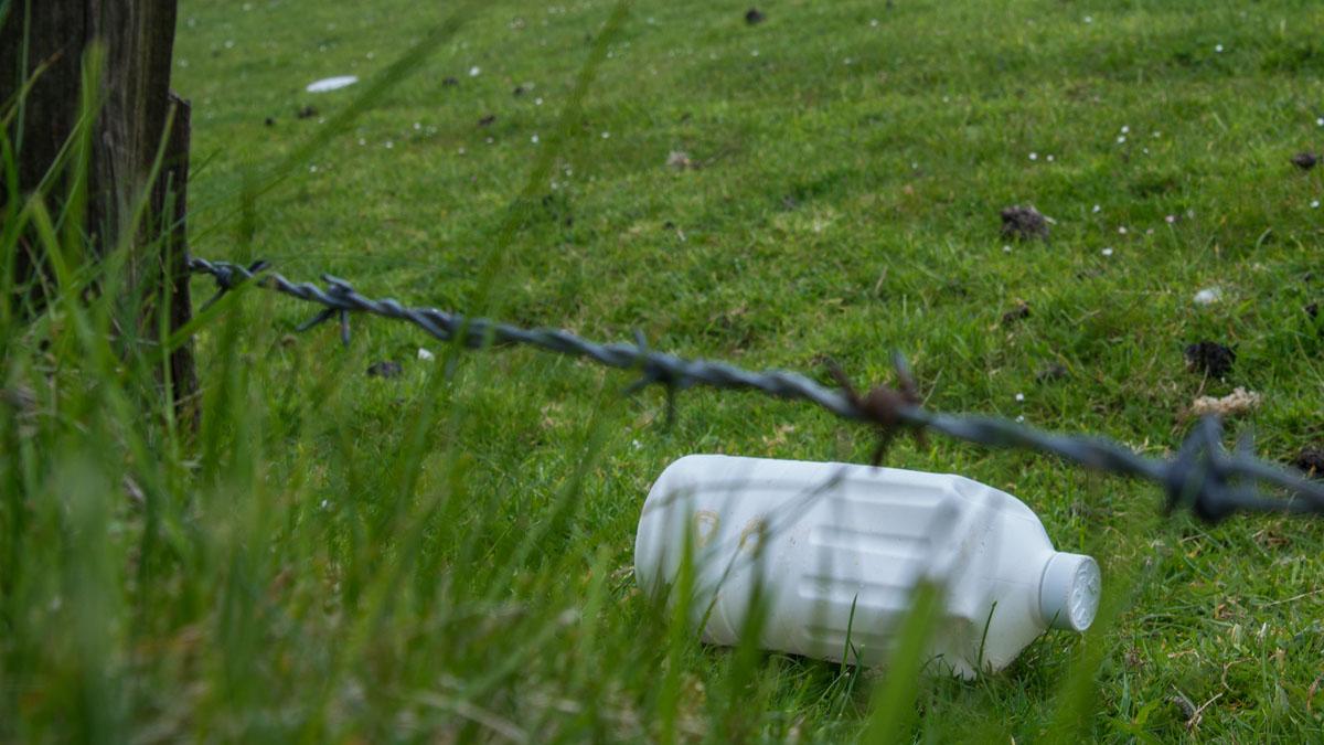 Müll am Nordseedeich