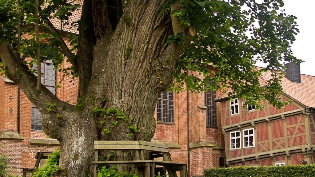 Kloster Isenhagen bei Hankensbüttel