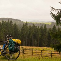 Im Nationalpark Harz