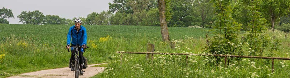 Kaltenhofer Allee im Dänischen Wohld